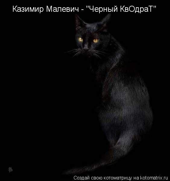 """Котоматрица: Казимир Малевич - """"Черный КвОдраТ"""""""