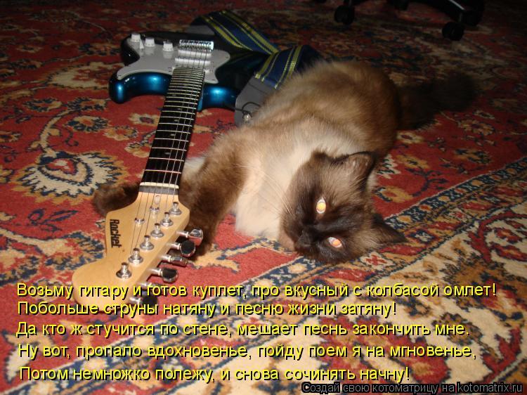 Котоматрица: Возьму гитару и готов куплет, про вкусный с колбасой омлет! Побольше струны натяну и песню жизни затяну! Да кто ж стучится по стене, мешает п