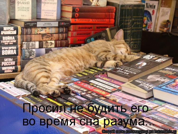 Котоматрица: во время сна разума... Просил не будить его
