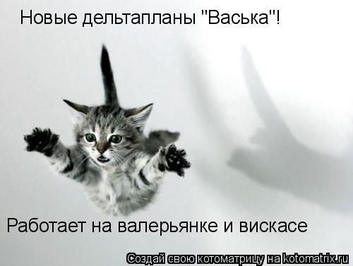 """Котоматрица: Новые дельтапланы """"Васька""""! Работает на валерьянке и вискасе"""
