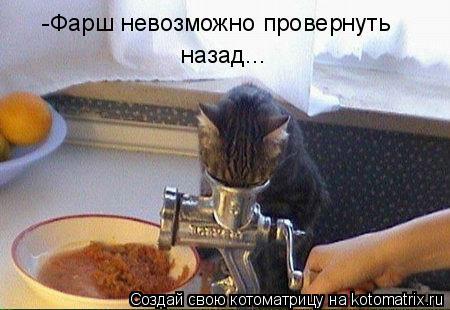 Котоматрица: -Фарш невозможно провернуть назад...