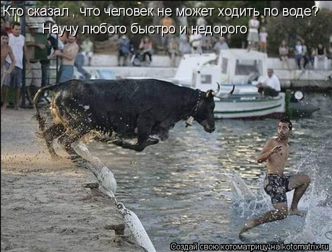 Котоматрица: Кто сказал , что человек не может ходить по воде? Научу любого быстро и недорого