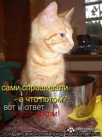 Котоматрица: сами спрашивали: - а что потом?  вот и ответ -суп с котом!