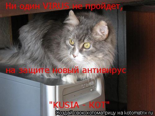 "Котоматрица: Ни один VIRUS не пройдет,  на защите новый антивирус  ""KUSIA - КОТ"""