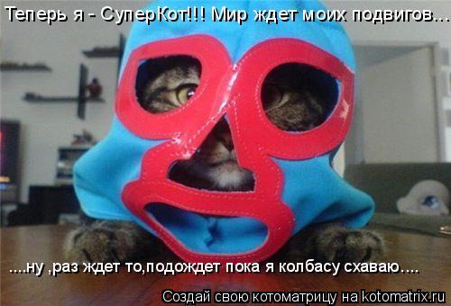 Котоматрица: Теперь я - СуперКот!!! Мир ждет моих подвигов... ....ну ,раз ждет то,подождет пока я колбасу схаваю....