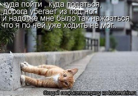 Котоматрица: куда пойти , куда податься, дорога убегает из под ног! и надо же мне было так нажраться что я по ней уже ходить не мог..