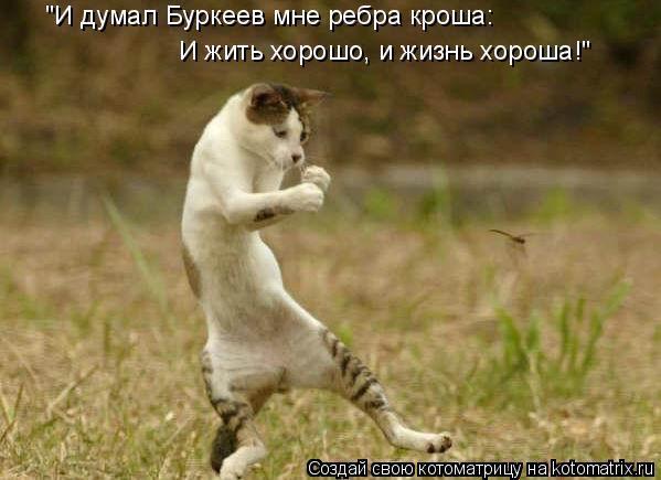 """Котоматрица: """"И думал Буркеев мне ребра кроша: И жить хорошо, и жизнь хороша!"""""""