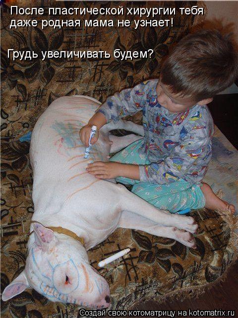 Котоматрица: После пластической хирургии тебя  даже родная мама не узнает! Грудь увеличивать будем?