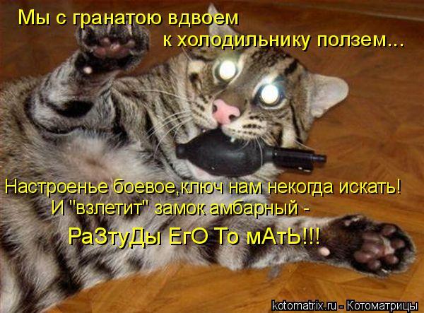 """Котоматрица: Мы с гранатою вдвоем  к холодильнику ползем... Настроенье боевое,ключ нам некогда искать! И """"взлетит"""" замок амбарный - РаЗтуДы ЕгО То мАтЬ!!!"""
