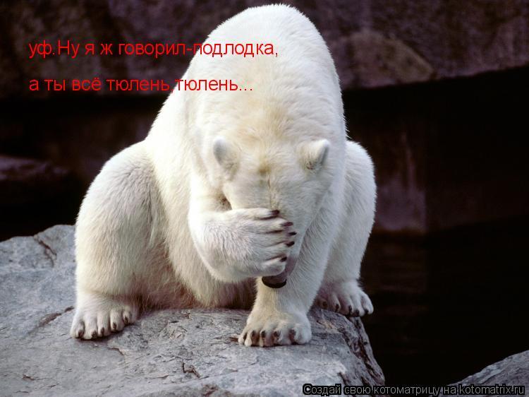 Котоматрица: уф.Ну я ж говорил-подлодка, а ты всё тюлень,тюлень...