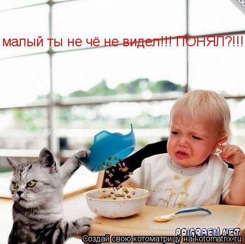 Котоматрица: малый ты не чё не видел!!! ПОНЯЛ?!!!!!