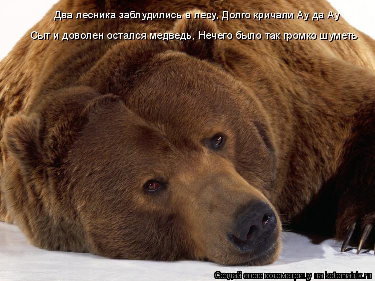 Котоматрица: Два лесника заблудились в лесу, Долго кричали Ау да Ау Сыт и доволен остался медведь, Нечего было так громко шуметь