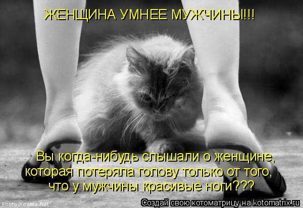 Котоматрица: ЖЕНЩИНА УМНЕЕ МУЖЧИНЫ!!! Вы когда-нибудь слышали о женщине, которая потеряла голову только от того, что у мужчины красивые ноги???