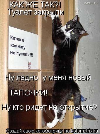 Котоматрица: КАК ЖЕ ТАК?! ТАПОЧКИ! Ну кто ридет на открытие? Туалет закрыли Ну ладно  у меня новый