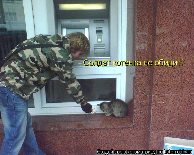 Котоматрица: - Солдат котенка не обидит!