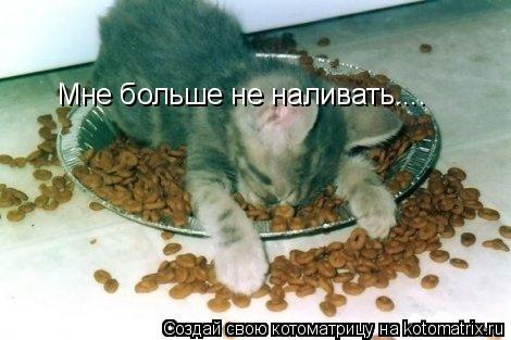 Котоматрица: Мне больше не наливать....