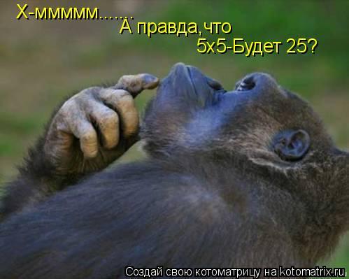 Котоматрица: Х-ммммм....... А правда,что 5х5-Будет 25?
