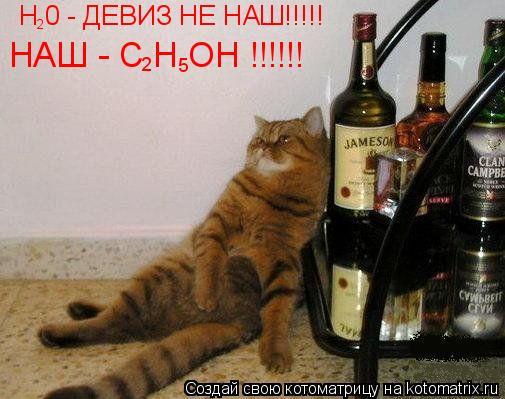 Котоматрица: Н 0 - ДЕВИЗ НЕ НАШ!!!!!  2 НАШ - С Н ОН !!!!!! 2 5