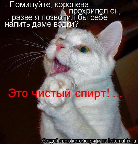Котоматрица: – Помилуйте, королева,  – прохрипел он,  – разве я позволил бы себе  налить даме водки? Это чистый спирт! ...