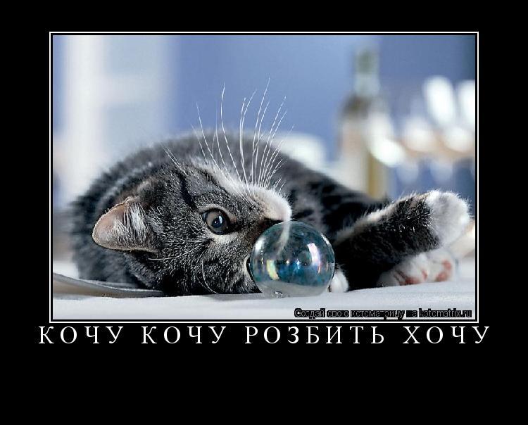 Котоматрица: кочу кочу розбить хочу