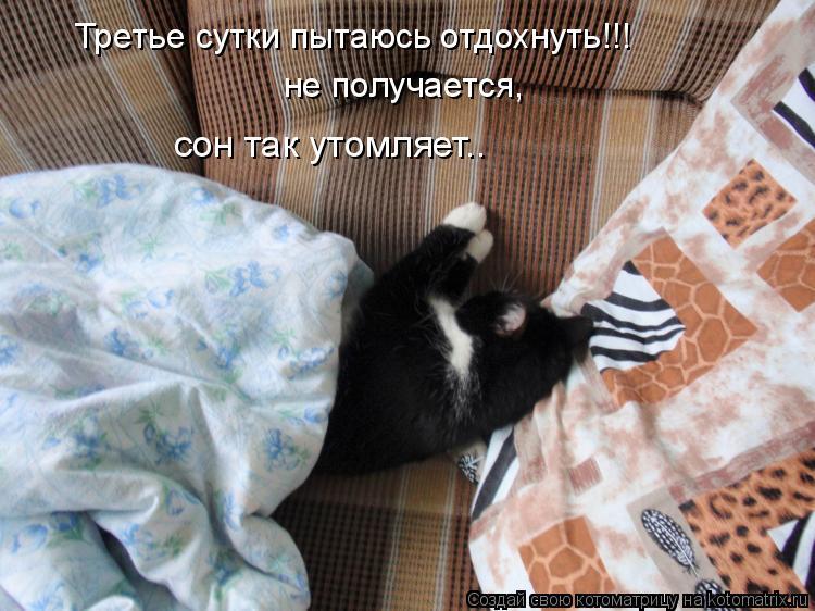Котоматрица: не получается, сон так утомляет.. Третье сутки пытаюсь отдохнуть!!!