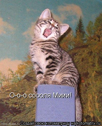 Котоматрица: О-о-о соооля Миии!