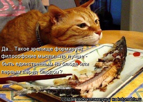 Котоматрица: Да... Такое зрелище формирует  философские мысли: что лучше - быть единственным на блюде или первым перед блюдом?..