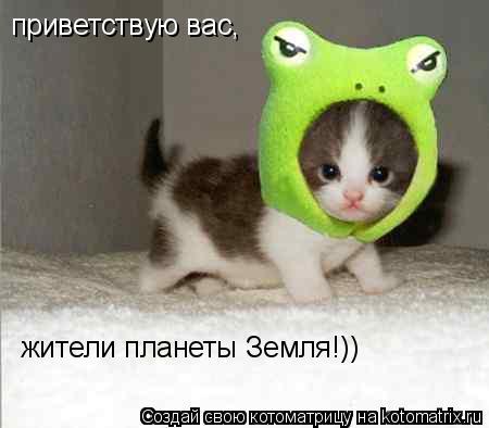 Котоматрица: приветствую вас, жители планеты Земля!))