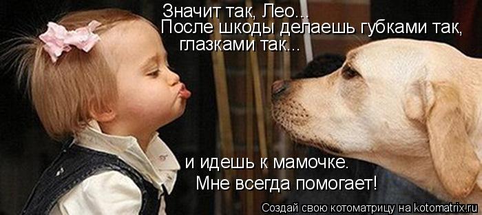Котоматрица: Значит так, Лео... После шкоды делаешь губками так, глазками так... Мне всегда помогает! и идешь к мамочке.