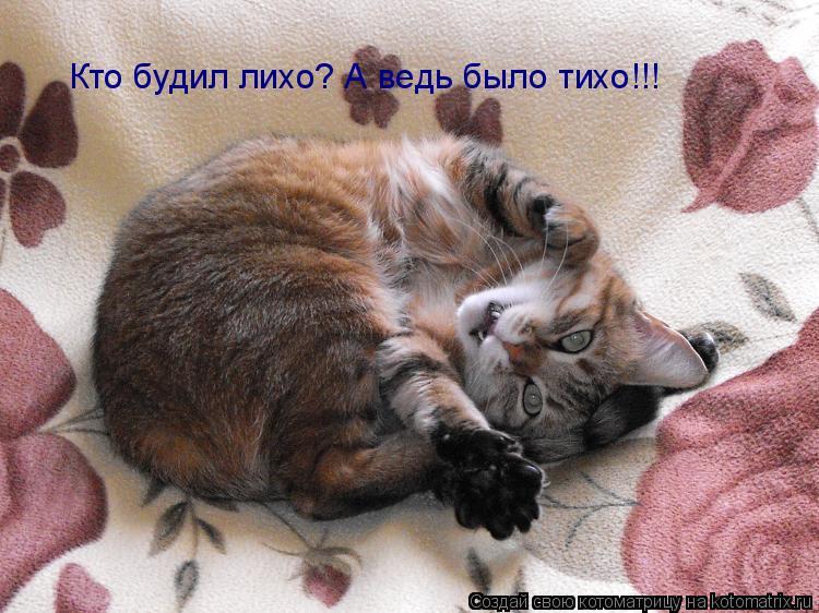 Котоматрица: Кто будил лихо? А ведь было тихо!!!