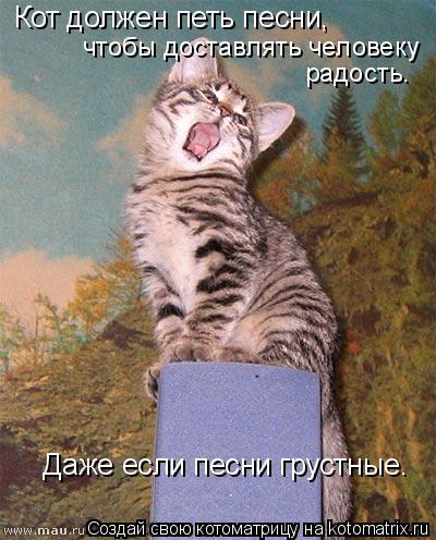 Котоматрица: Кот должен петь песни,  чтобы доставлять человеку  радость.  Даже если песни грустные.