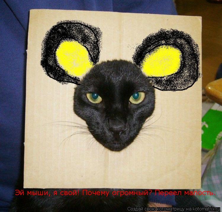 Котоматрица: Эй мыши, я свой! Почему огромный? Переел малость.
