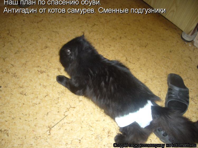 Котоматрица: Наш план по спасению обуви. Антигадин от котов самурев. Сменные подгузники