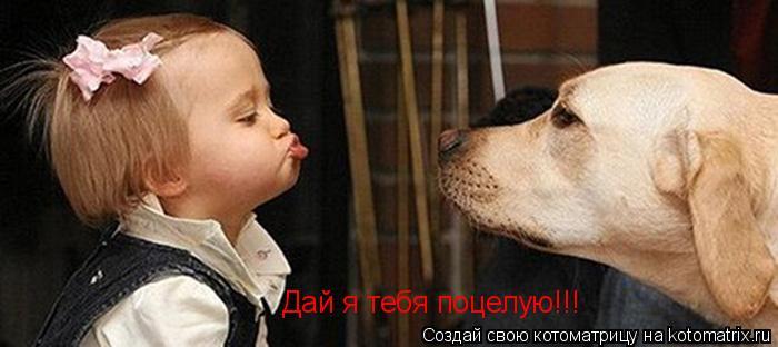 Котоматрица: Дай я тебя поцелую!!!