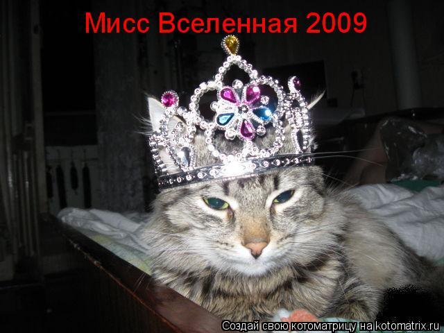 Котоматрица: Мисс Вселенная 2009