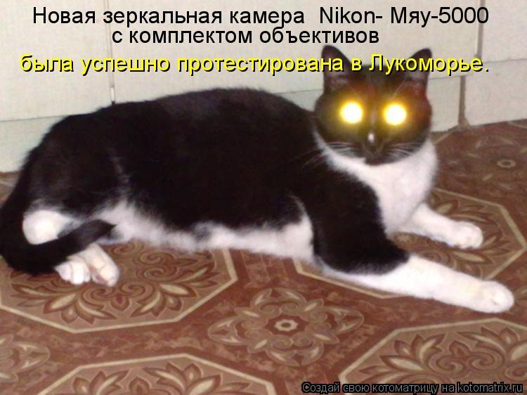 Котоматрица: Новая зеркальная камера «Nikon- Мяу-5000»  с комплектом объективов  была успешно протестирована в Лукоморье.