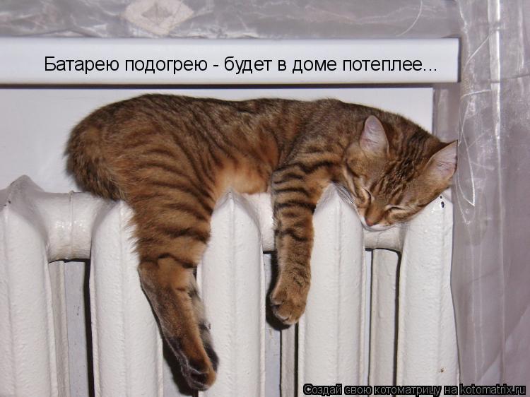 Котоматрица: Батарею подогрею - будет в доме потеплее...