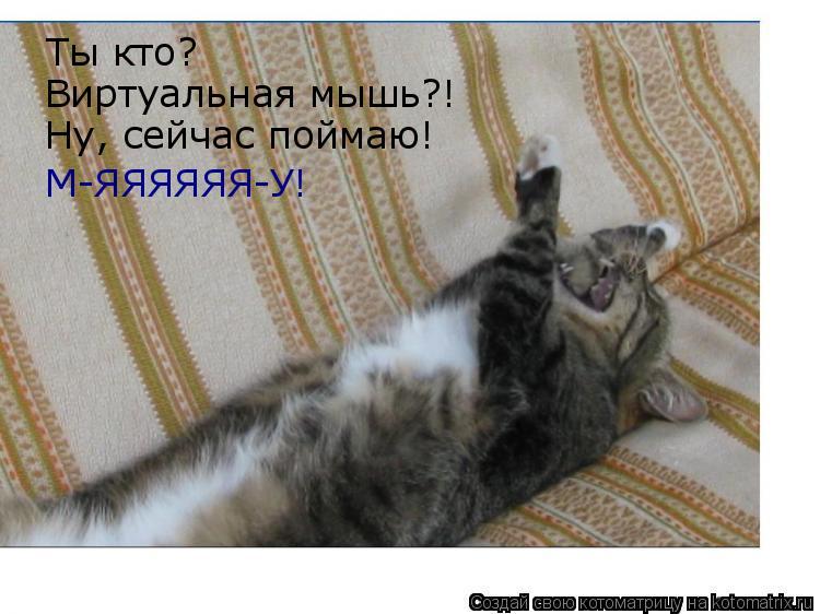 Котоматрица: Ты кто?  Виртуальная мышь?! Ну, сейчас поймаю!  М-ЯЯЯЯЯЯ-У!