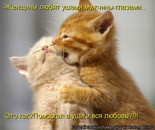 Котоматрица: -Женщины любят ушами,мужчины-глазами... -Это как?Поморгал в уши и вся любовь?!!!