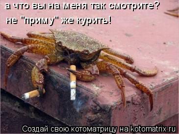 """Котоматрица: а что вы на меня так смотрите? не """"приму"""" же курить!"""