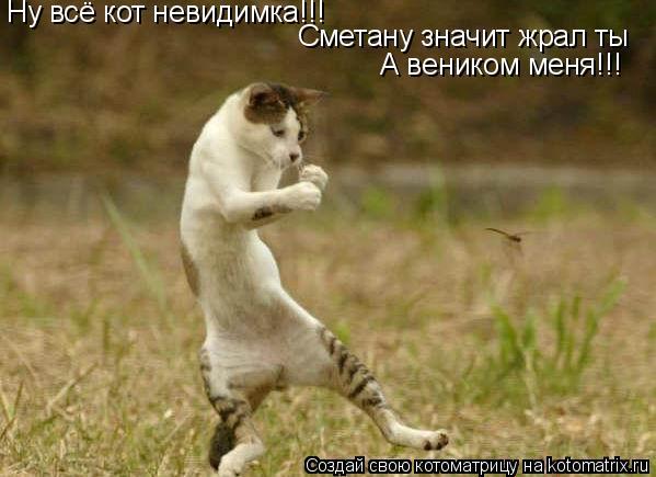 Котоматрица: Ну всё кот невидимка!!! Сметану значит жрал ты А веником меня!!!