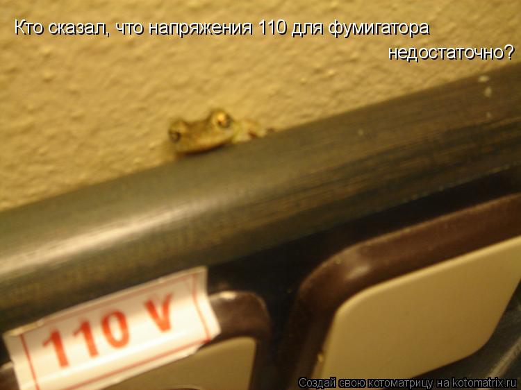 Котоматрица: Кто сказал, что напряжения 110 для фумигатора  недостаточно?