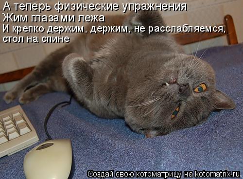 Котоматрица: А теперь физические упражнения Жим глазами лежа И крепко держим, держим, не расслабляемся, стол на спине