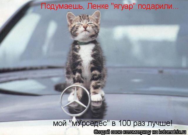 """Котоматрица: Подумаешь, Ленке """"ягуар"""" подарили... мой """"мУрседес"""" в 100 раз лучше!"""