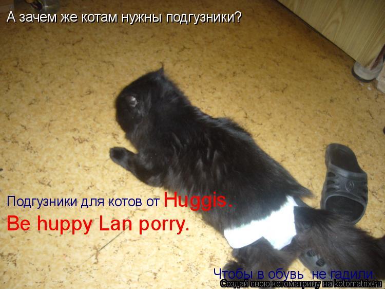 Котоматрица: А зачем же котам нужны подгузники? Чтобы в обувь  не гадили. Подгузники для котов от  Huggis.  Be huppy Lan porry.