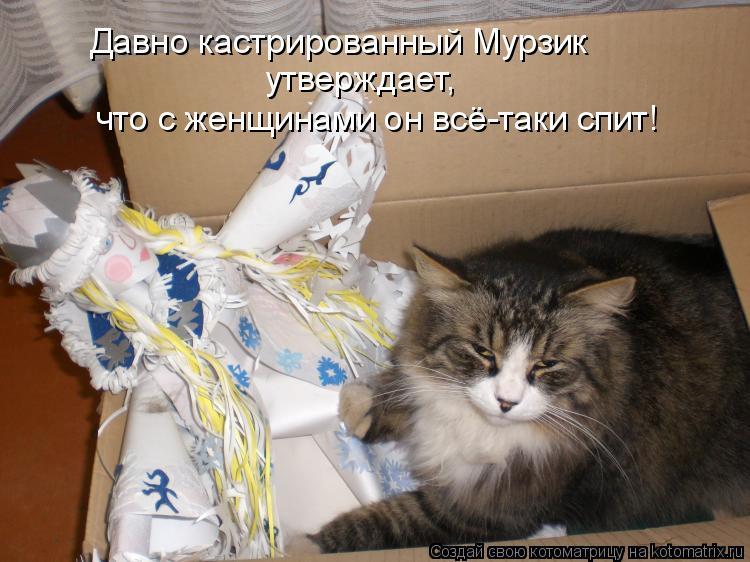 Котоматрица: Давно кастрированный Мурзик  утверждает,  что с женщинами он всё-таки спит!