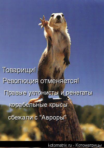 """Котоматрица: Товарищи! Революция отменяется! Правые уклонисты и ренегаты корабельные крысы сбежали с """"Авроры"""""""