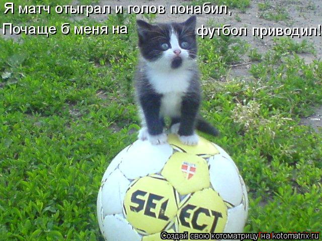 Котоматрица: Я матч отыграл и голов понабил, Почаще б меня на футбол приводил!
