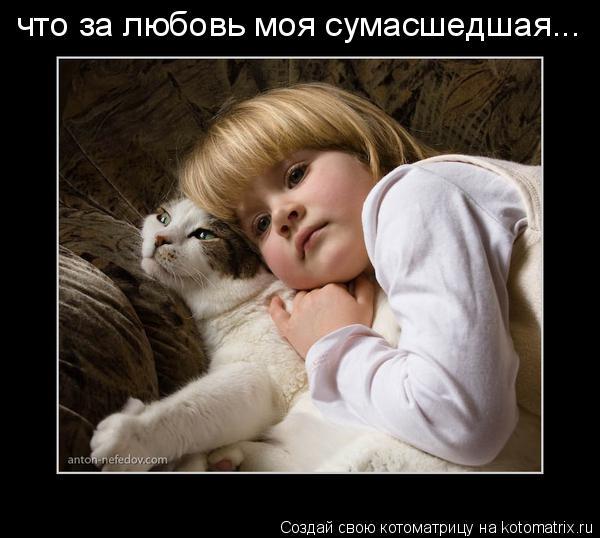 Котоматрица: что за любовь моя сумасшедшая...