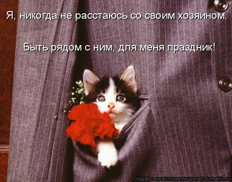 Котоматрица: Я, никогда не расстаюсь со своим хозяином. Быть рядом с ним, для меня праздник!